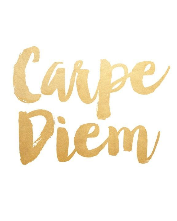 Nice Carpe Diem is often used for emphasis after saying something that urges someone to make the