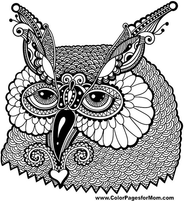 Owl Coloring page 13: