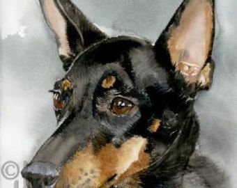 """Toy Manchester Terrier, Black & Tan, AKC Toy, Pet Portrait Dog Art Watercolor Painting Print Picture, Wall Art, Home Decor, """"High Spirits"""""""