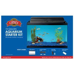 Best 25+ 29 gallon aquarium ideas on Pinterest   Aquarium ...
