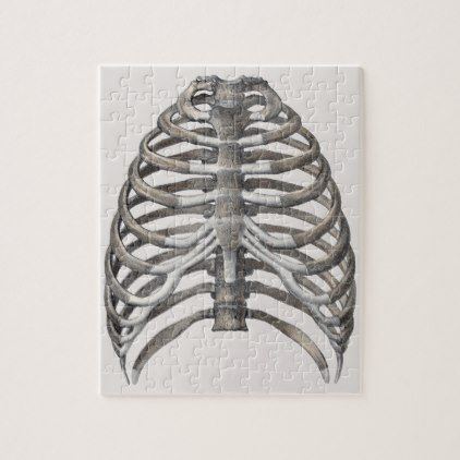Vintage Human Anatomy Skeleton Skeletal Ribs Bones Jigsaw Puzzle - retro gifts style cyo diy special idea