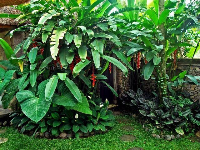 Private lush green garden inside the compund - Sumara House Ubud, Unique private compound. -  - rentals