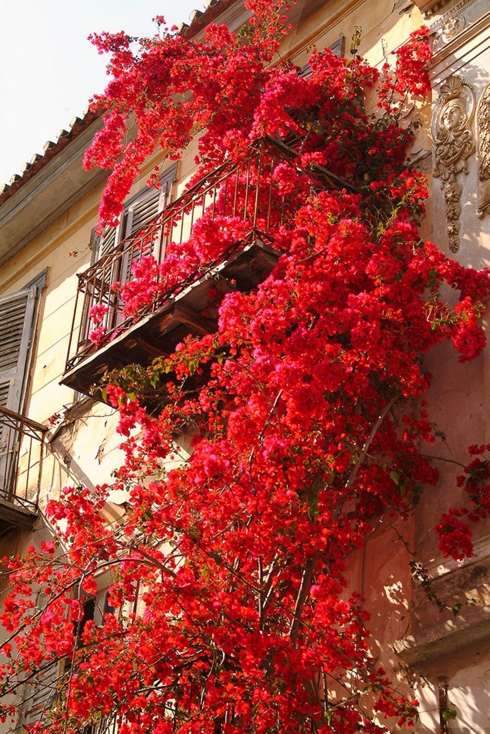 Nafplion, Greece.  This trip with Marie :) let's go sis!