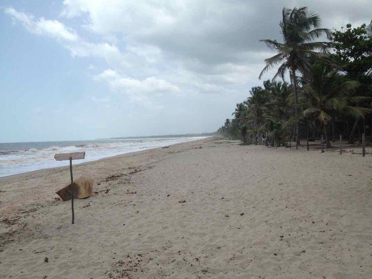Palomino Colombia. Un posto unico, originale, siamo nella regione de La Guajira, sulla costa caraibica ma qui sembra di essere sulla costa Pacifica.