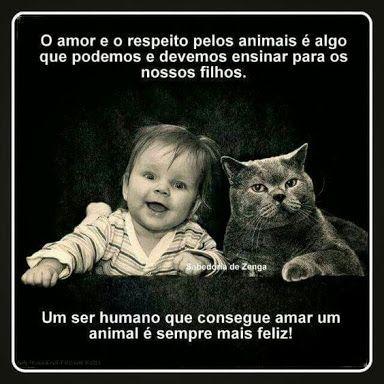 PURA VERDADE! ❤️❤️❤️ #amorincondicional #petmeupet #amoanimais #gatos #cachorro #filhode4patas #maedepet