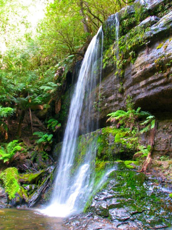 """Russell Falls. Photo by """"The Beach Dweller"""" and article for Think Tasmania."""