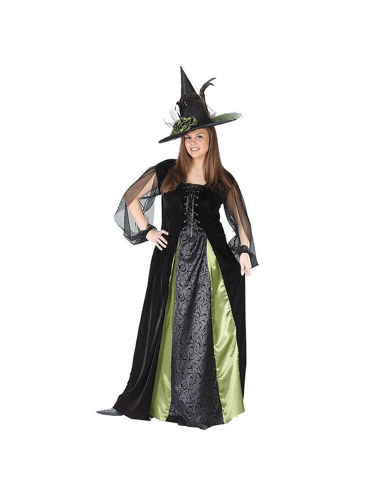 17 best images about plus size halloween costumes and for Plus size hocus pocus shirt