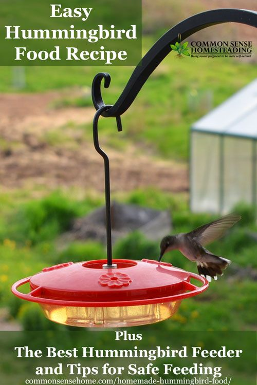 This homemade hummingbird food recipe is ready in minutes. Find out why I picked the Hummzinger hummingbird feeder, plus how to keep your hummers safe.