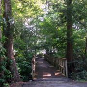 43 Free/Cheap Things to do in Hilton Head!