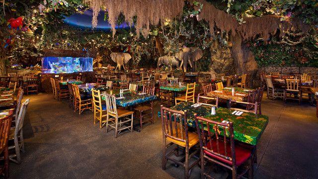 Rainforest Cafe Dinner at Disney Springs - Friday Dinner