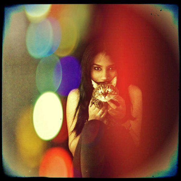 PAOLA SINISTERRA (@PAOLASINISTERRA) | Twitter #CATS #CAT #GATITOS