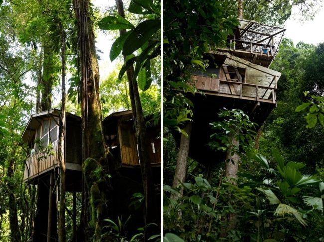 Holz Baum Haus-auf Stelzen-im-Wald Costa Rica Dschungel
