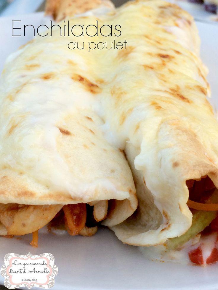 Une enchilada est une préparation culianire d'origine méxicaines composée d'une tortilla garnie, roulée puis recouverte de sauce épicée. La tortilla utilisée est généralement frite avant d'être remplie ; la garniture comporte généralement de la viande,...