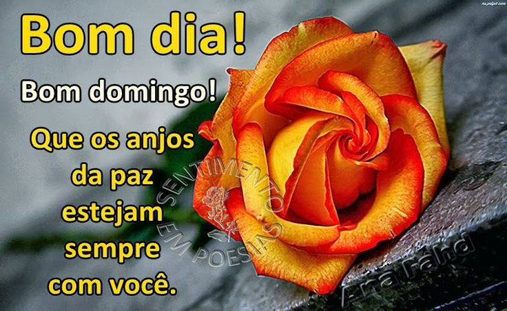 1000+ Images About BOM DIA On Pinterest
