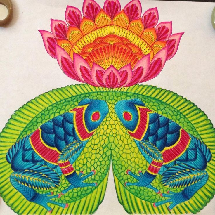 Color Coloring Coloringbookforadults Coloringbooks Book PrismacolorAnimal KingdomTurtleFrogsLotusWonderlandColorTime