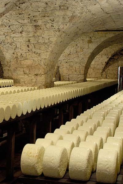 Caves and cellars are perfect for aging cheese. Humidity in cellars is traditionally controlled by gravity-fed, pure spring water transported through a series of wooden troughs. Room temperature is controlled via air flow. Additional flavour can be imparted to the cheese by the inclusion of large amounts of herbs in the cellars during the aging process.