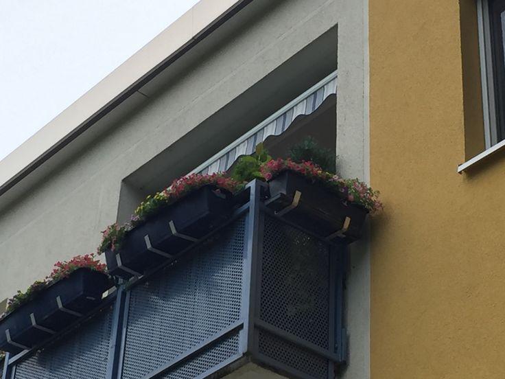 Balkonmarkisen auch die haben wir im Angebot wie hier mit kleine Breite und passende Deckenmontage realisiert in Hamburg Hausbruch