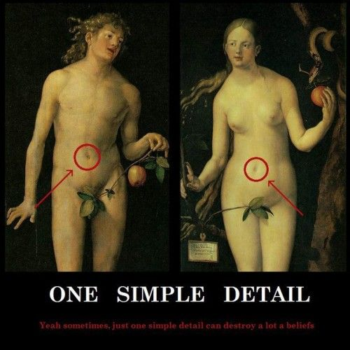 Atheism, Religion, God is Imaginary, Creationism, Adam & Eve, Science, Evolution. One simple detail. Yeah, sometimes, just one simple detail can destroy a lot of beliefs. They had belly buttons. Oooops!