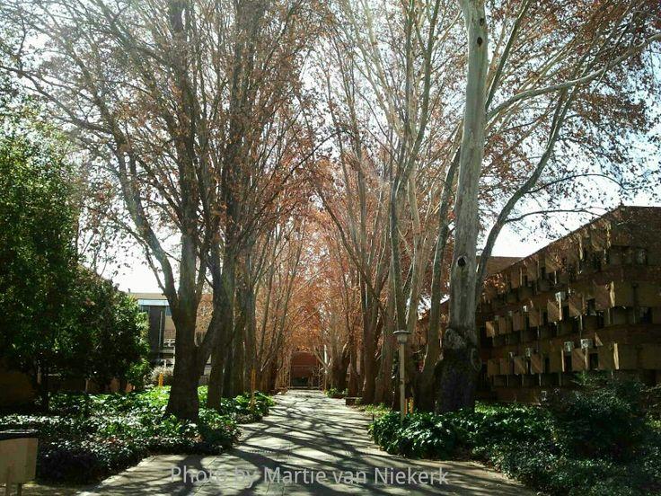 PUK Campus, North West University, Potchefstroom, South Africa