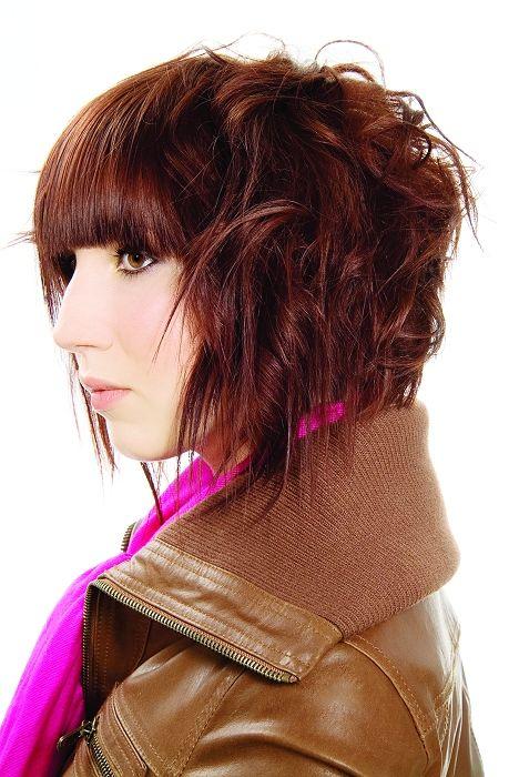 Guy Kremer medium brown Hairstyles