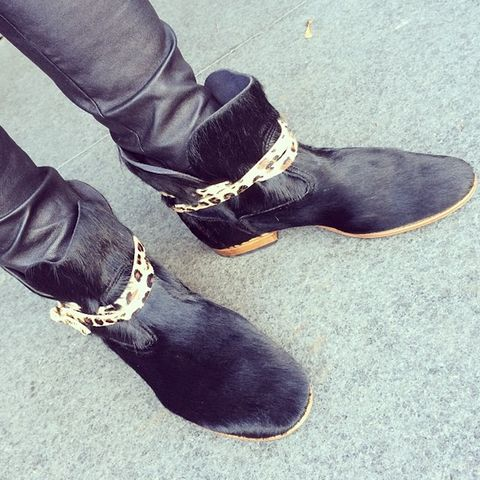 Black Beauty – Bottines