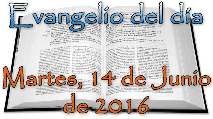 Evangelio del día (Martes, 14 de Junio de 2016)