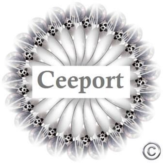 CEEPORT= Clean Erase Erase until you reach the PORT(Zero State-the state of pure potential)