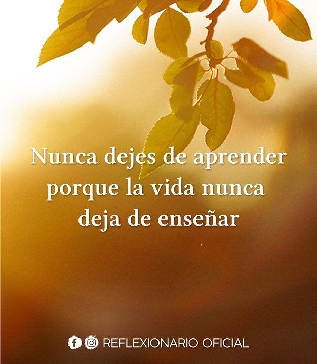 Nunca Dejes De Aprender Porque La Vida Nunca Deja De Enseñar