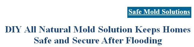 Storms and flash floods have been ravaging entire span of the nation, giving rise to severe losses in terms of both lives and property. http://www.safemoldsolutions.com