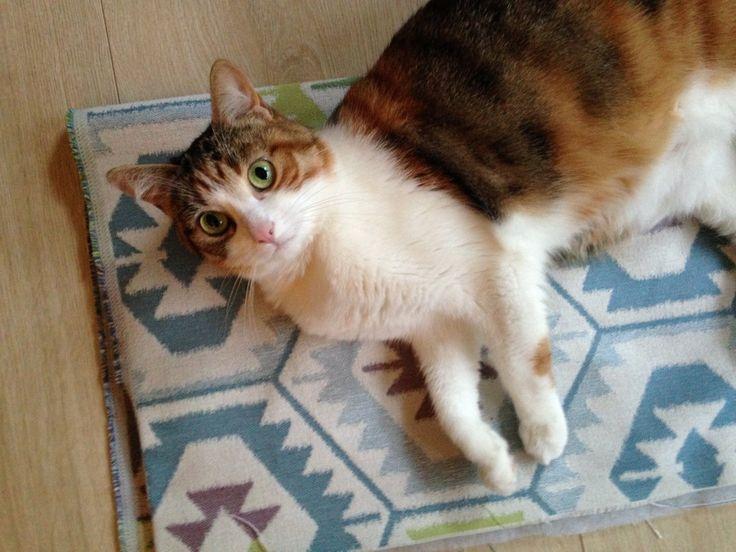 L'astuce DIY – Coudre un tapis sur mesure