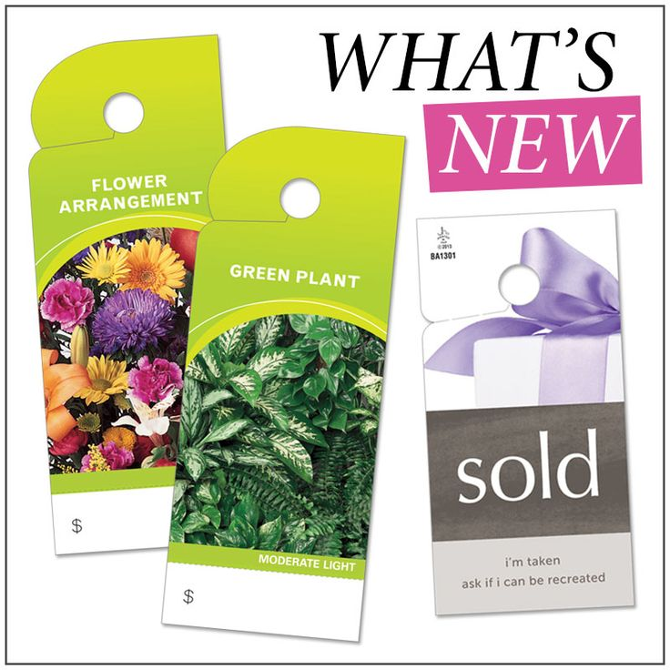 "Start your Monday off with our ""What's New"" section! Check out these NEW Floral Tags!"