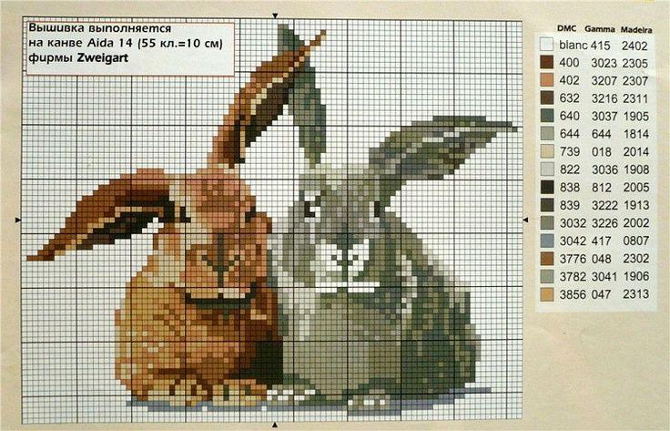 Gallery.ru / Фото #55 - кролики 5 - tatasha