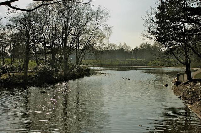 Lovely Sefton Park