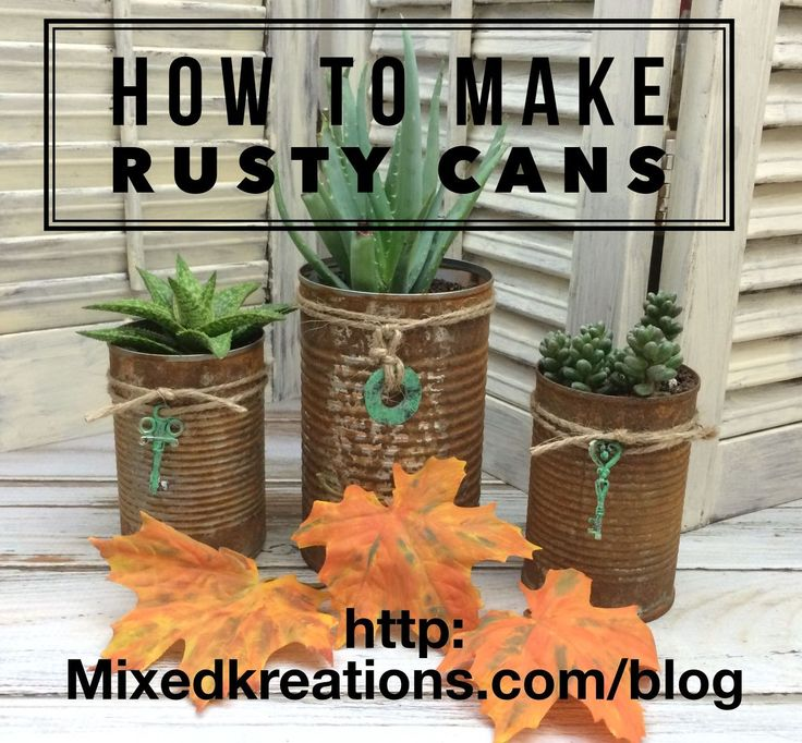 How to make rusty tin can to use as planters for succulents I have been wanting to learn how to make some rusty tin cans to craft with so I s…