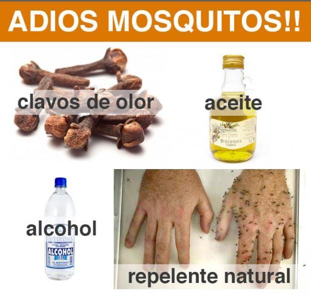 Receta Repelente natural para mosquitos
