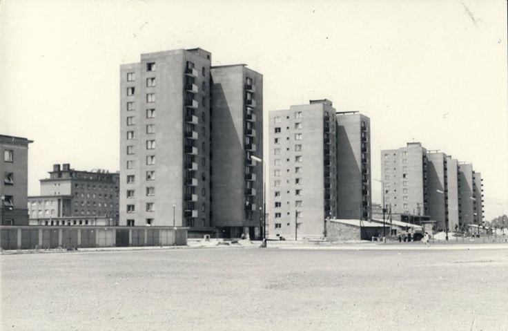 Vežové bytové domy v Ružovej doline pomenované po svojom autorovi arch. Palušovi. Zaujímavosťou je, že domy sú tehlové a sú to jedny z prvých vežiakov postavených na bratislavských sídliskách. Kúpalisko Delfín ešte vo výstavbe (medzi domami). Na mieste kde domy stoja viedlo ešte v 30tych rokoch 20teho storočia Mlynské rameno. Vie niekto načo slúžili nízke budovy so šikmou strechou pred domami? Začiatok 60tych rokov. Autor: Neznámy
