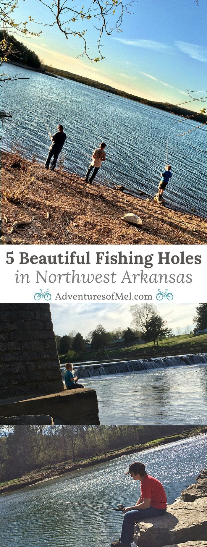 5 Beautiful Fishing Holes in Northwest Arkansas