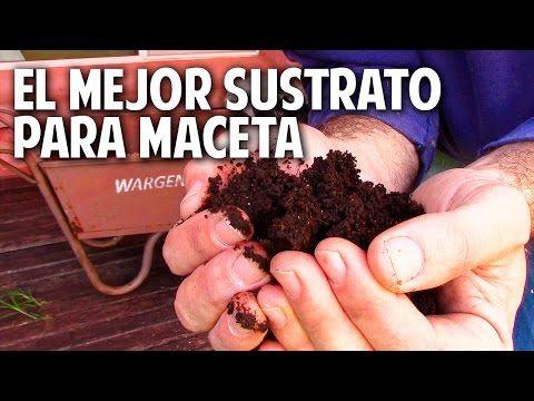 5 fertilizantes con cascara de platano - Potasio - Mas Frutos @cosasdeljardin - YouTube