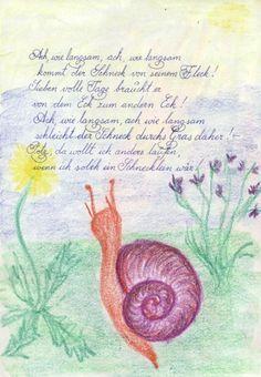 Waldorf ~ 5th grade ~ Botany ~ Plant Growth & Metamorphosis 2 ...