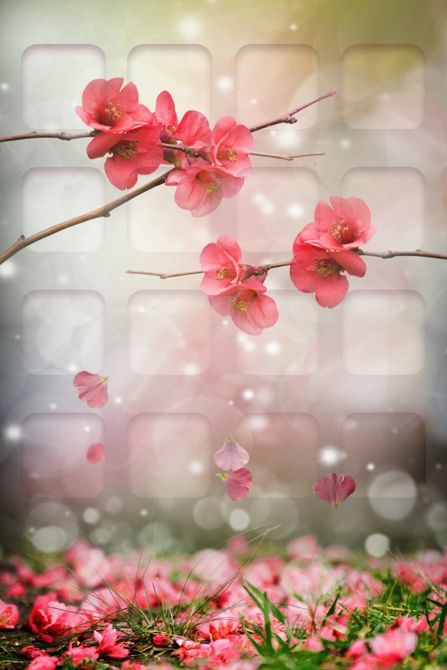 25 best ideas about floral wallpaper iphone on pinterest - Flower wallpaper for your phone ...