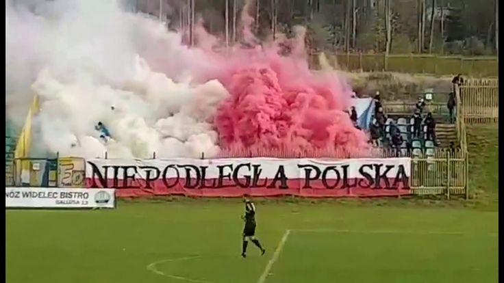 2L: Rozwój Katowice - Olimpia Elbląg [Olimpia fans]. 2017-11-11