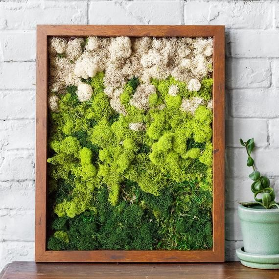 Moss Wall Art Wall Art 11x14 Moss Home Decor Preserved Etsy In 2020 Moss Wall Art Moss Wall Moss Art