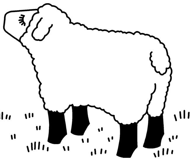 Parable Of Lost Sheep Coloring Page