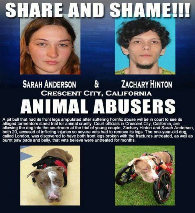I hope they go to jail for a long time! I hope they get the snot kicked out of them in jail. What would they do to people if they had the chance? Hope their families are proud of them.