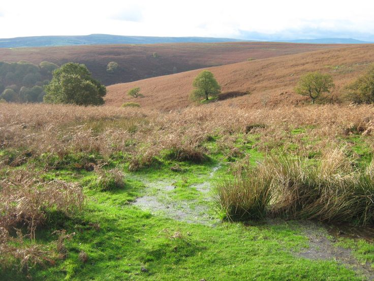 Brecon Beacons National Park (Wales)