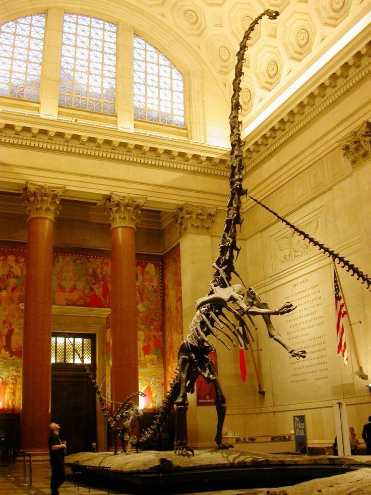 Natural History Museum Nyc Thanksgiving Entrance