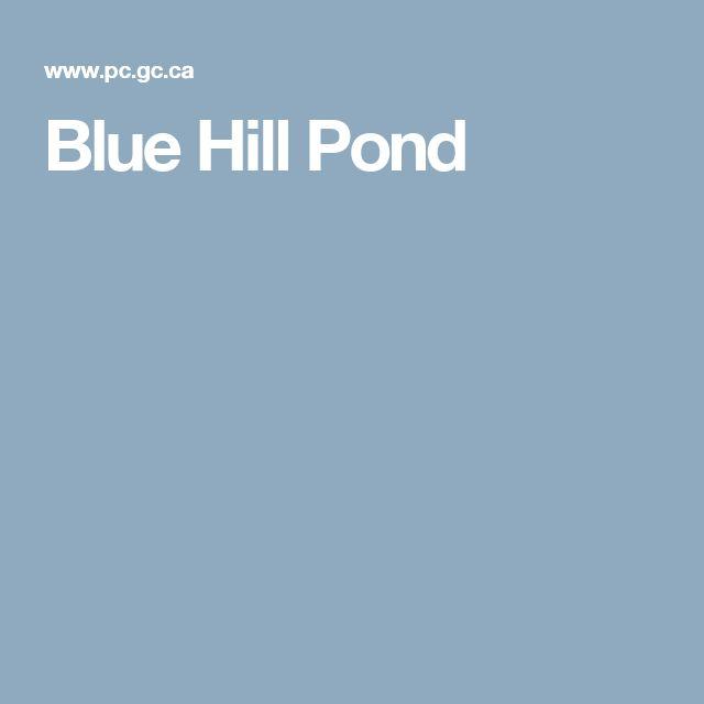 Blue Hill Pond