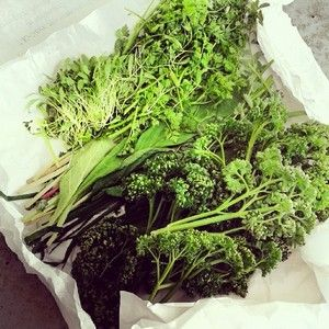 Zum Gründonnerstag: Vegane Frankfurter Grüne Soße