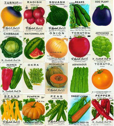 Vintage Vegetable Seed Packets