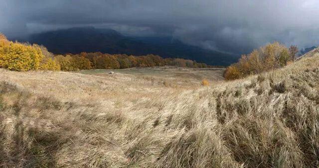 Autumn by Misha Luts